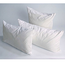 Joshua's Dream Zipped Pillow Protectors