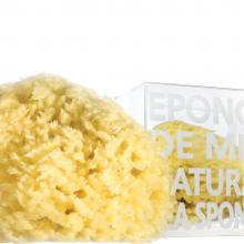 Compagnie De Provence Natural Sea Sponge in Box