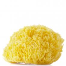 Compagnie De Provence Natural Sea Sponge Large
