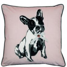 Ted Baker Cotton Dog