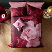 Ted Baker Porcelain Rose