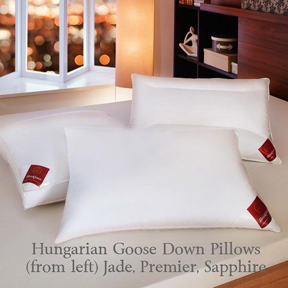 Brinkhaus The Premier Pillow Hungarian White Goose Down