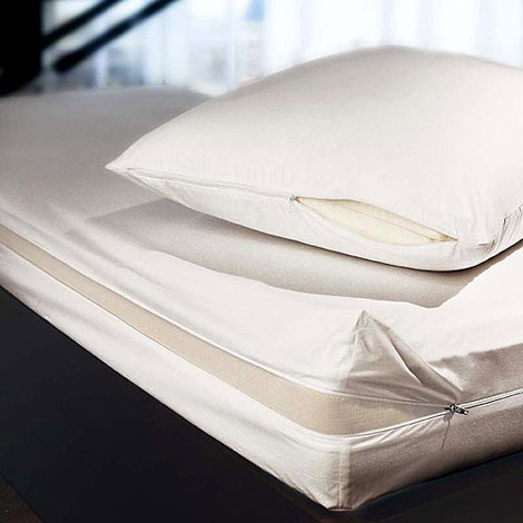 Brinkhaus Morpheus Dust Mite Barrier for Pillows